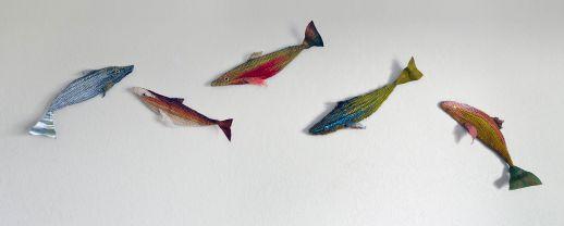 OLS_5Fish