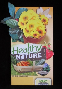 Healthy Nature by Cheri Kopp