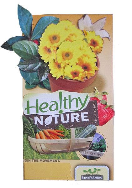 Healthy Nature_Cheri Kopp_600